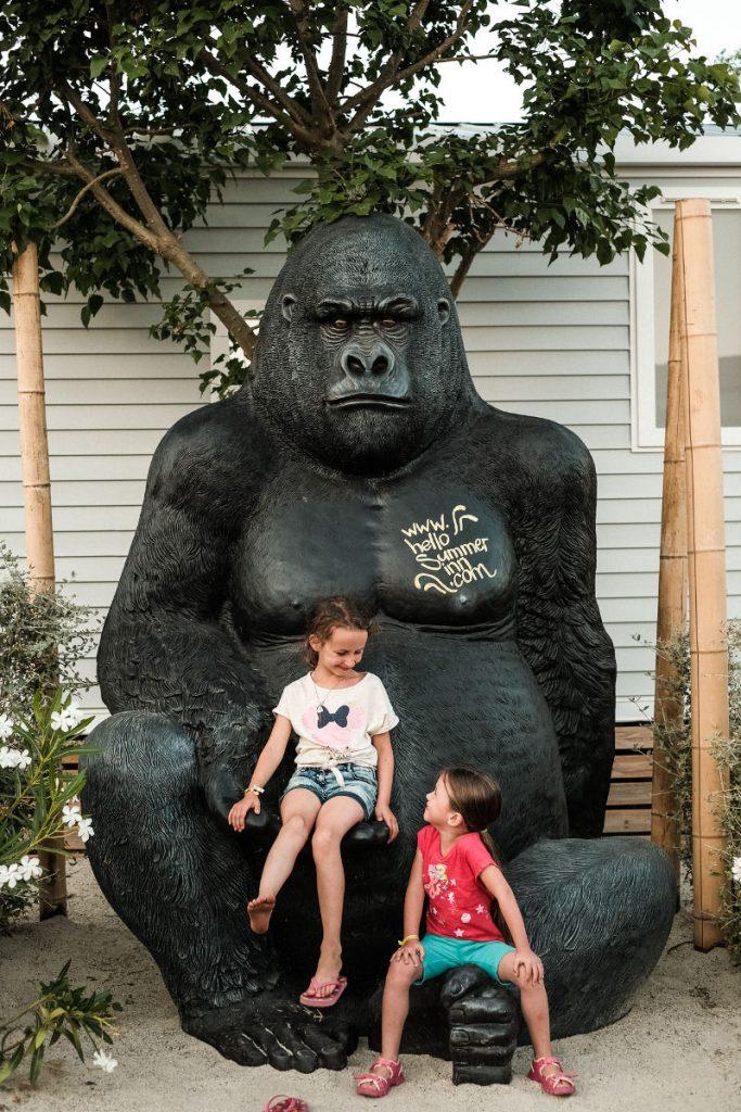 gorille camping Valras Plage