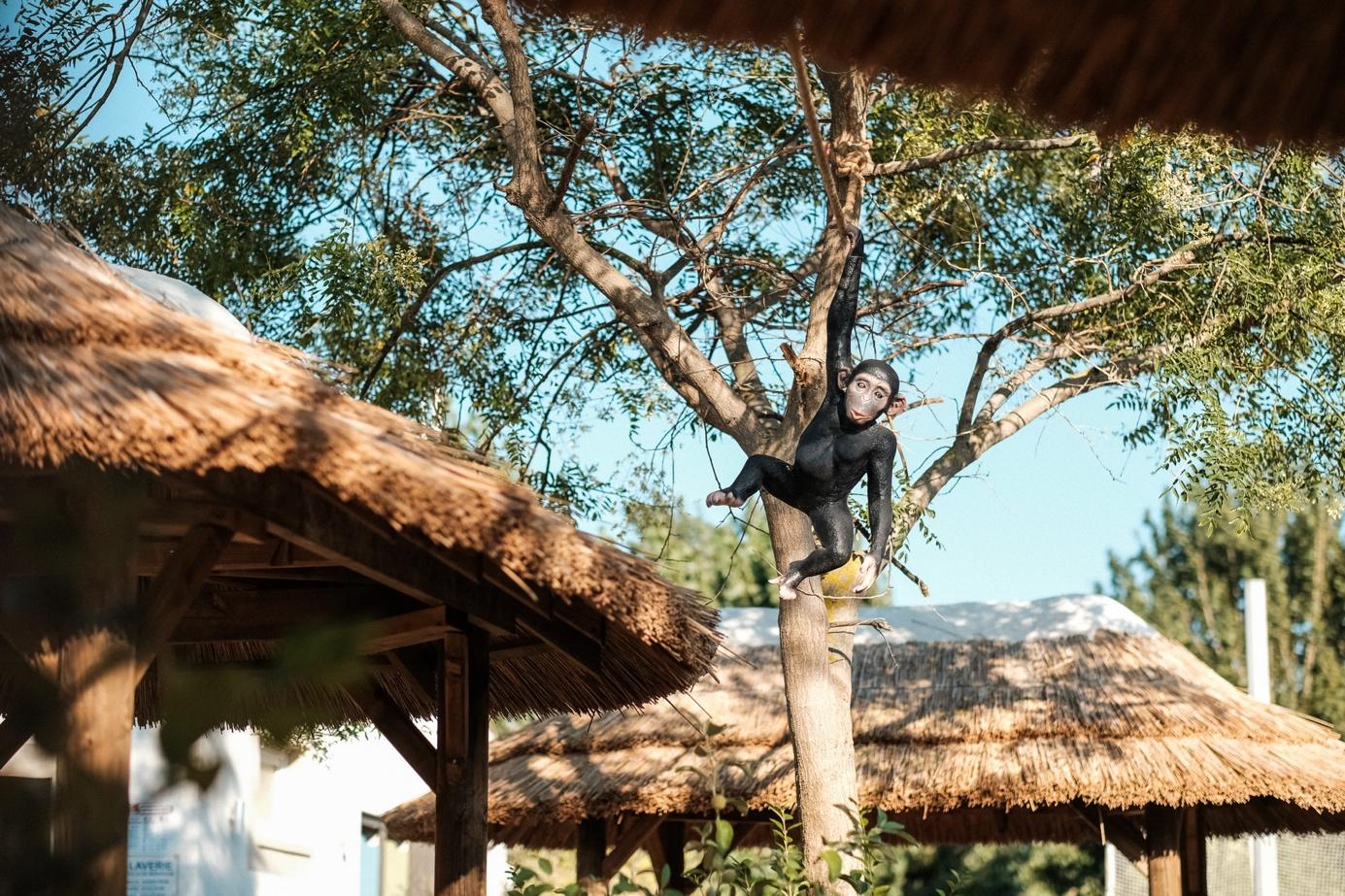 De beste familiale camping van Valras-Plage